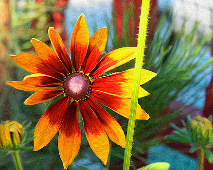 Fall Flower by Susie Fisher
