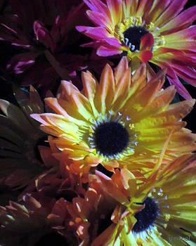 Fall Flowers by Jen Seel