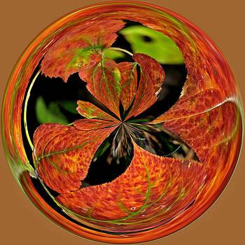Fall Foliage Orb by Liz Mackney