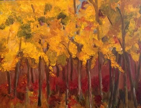 Fall Foliage by Susan Hanning
