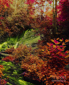 Fall Forest Fantasy by Annette Allman