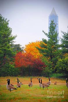 Jost Houk - Fall Geese of Washington