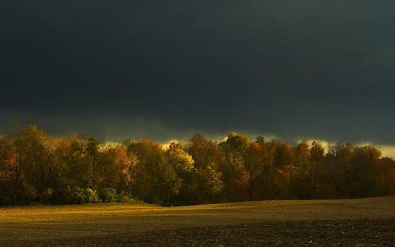 Fall Glow Albany Indiana by Bailey and Huddleston