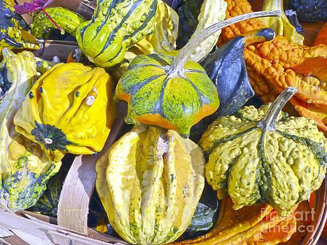 Dee Flouton - Fall Gourds