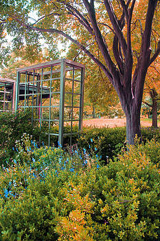 Carolyn Stagger Cokley - Fall Herb Garden0981