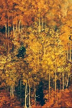 Fall Hillside by Ryan Adams