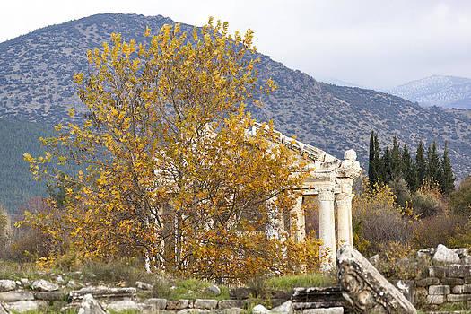 Ramunas Bruzas - Fall in Aphrodisias