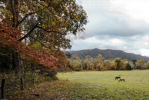 Fall in Cades Cove by Debbie Karnes