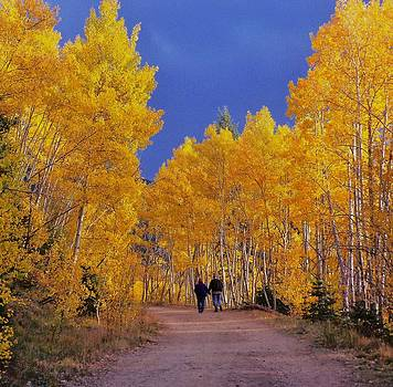 Fall In Northern New Mexico by Daria Yesieva-Kartsinski