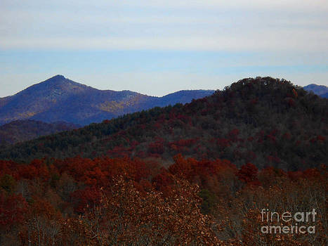 Fall in the North Georgia Mountains by Eva Thomas