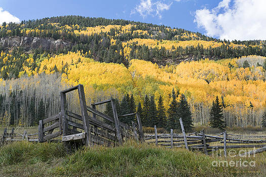 Jerry McElroy - Fall in the San Juans