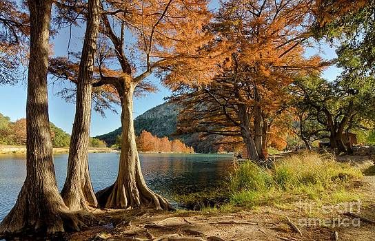 Fall in the Texas Hill Country by Cathy Alba