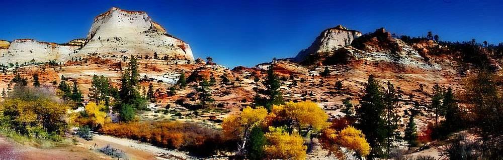 Fall in Upper Zion by Bill Zielinski