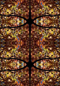 Steven Ralser - Fall Leaf Kaleidoscope