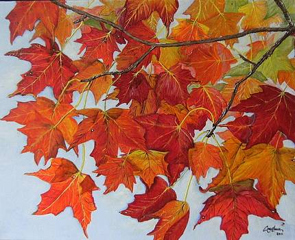 Fall Leaves by Connie Rowsell