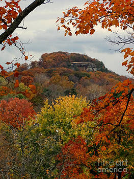 Scott B Bennett - Fall Leaves