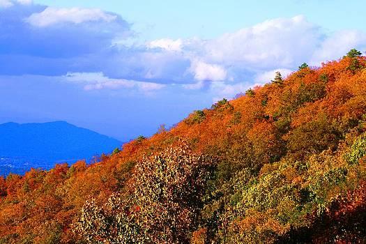 Fall Mountainside Beauty by Beth Andersen