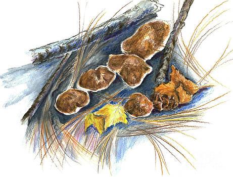 Ellen Miffitt - Fall Mushrooms
