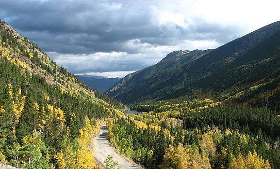 Kathy McCabe - Fall on Guanella Pass