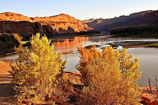 Marty Koch - Fall on the Colorado