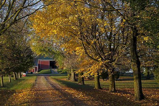 Fall On The Farm by John-Paul Fillion