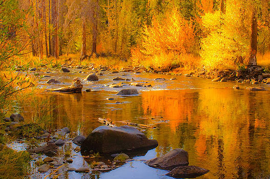 Fall On The Little Truckee River by Sherri Meyer