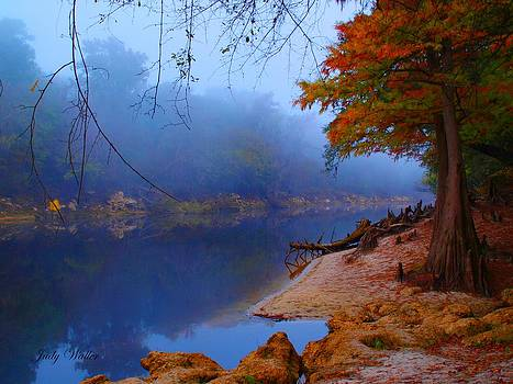 Fall On The Suwannee River by Judy  Waller