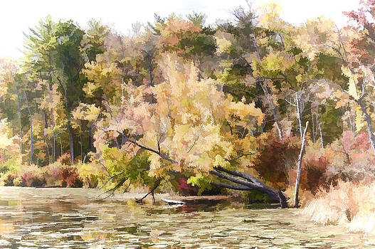 Fall Pond by Ray Summers Photography