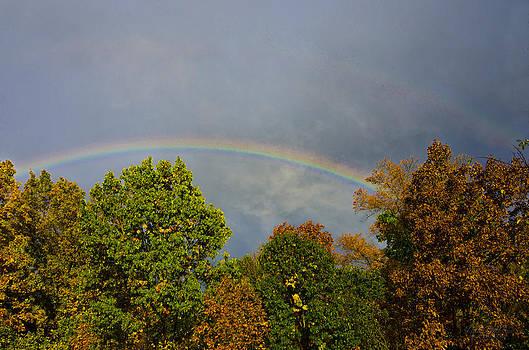 Fall Rainbow by Shirley Tinkham
