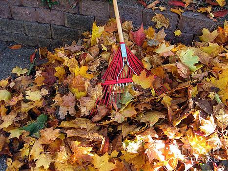 Ellen Miffitt - Fall Raking the Leaf Harvest