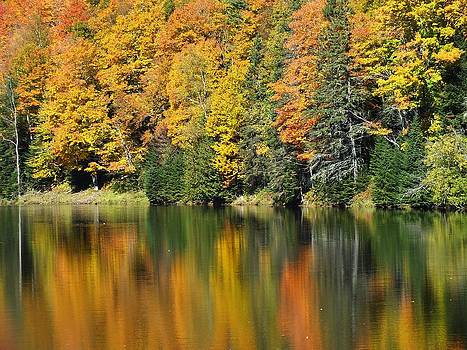 Fall Reflected by Gene Cyr