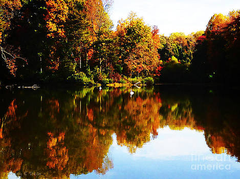 Nancy Stein - Fall Reflection in Summerfield