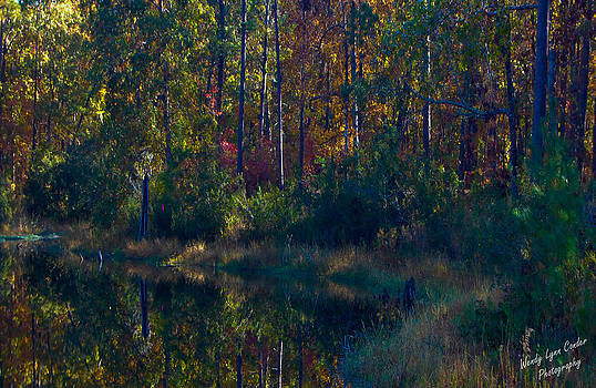 Fall Reflections by Wendy Lynn Conder
