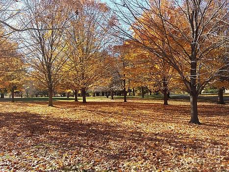 Fall Retreat by J Anthony Shuff