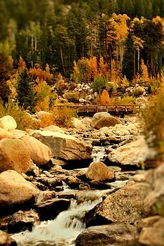 Fall Run off by Rebecca Adams