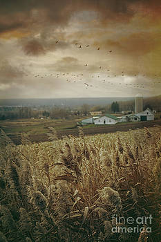 Sandra Cunningham - Fall rural scene of a farm in the valley