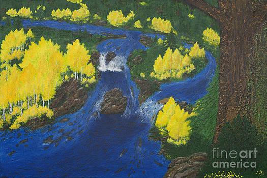 Fall Salmon Run by L J Oakes