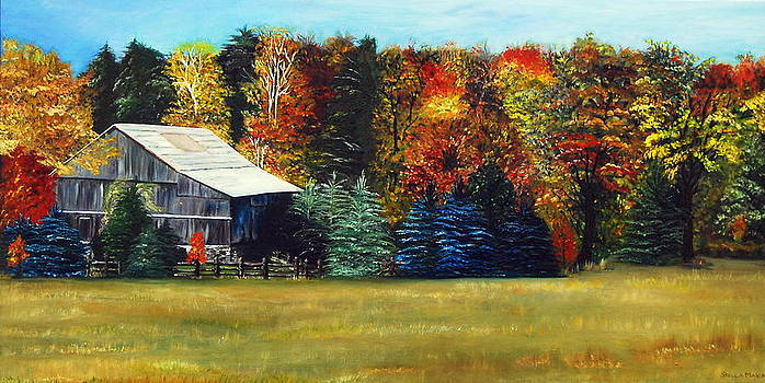 Fall by Stella Marin