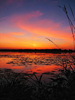 Dale Kauzlaric - Fall Sunset in the Mead Wildlife Area