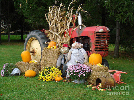 Fall Tractor by Eva Kato
