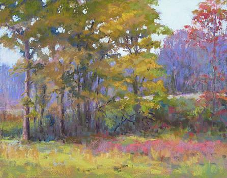 Fall Vision by Marsha Savage