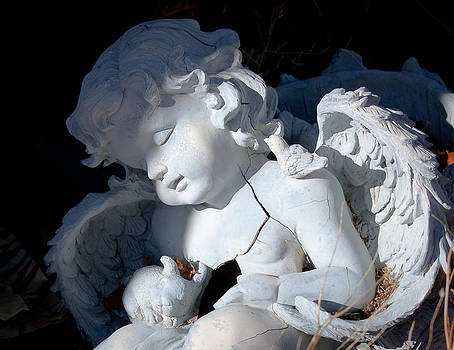 Fallen Angel by Mary Nash-Pyott