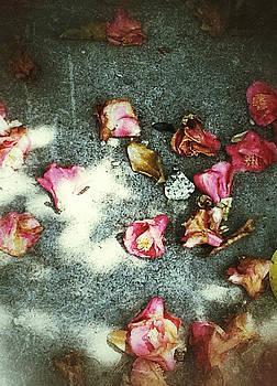 Fallen Floral by Yen