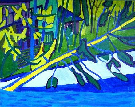 Fallen Pine at Massapoag Lake by Debra Bretton Robinson