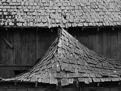 Fallen Barn Shingles - Black and White by Ian Mcadie