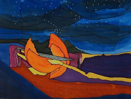 Fallen Sun by Diane Maley