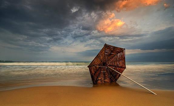 Fallen umbrella by Andrey Trifonov