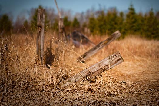 Falling Fence by Daniel Martin