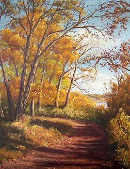 Falling Leaves by Cindy Welsh