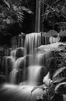 Falling Waters by Diana Boyd